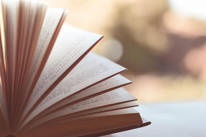 100 jähriger Kalender - Buch